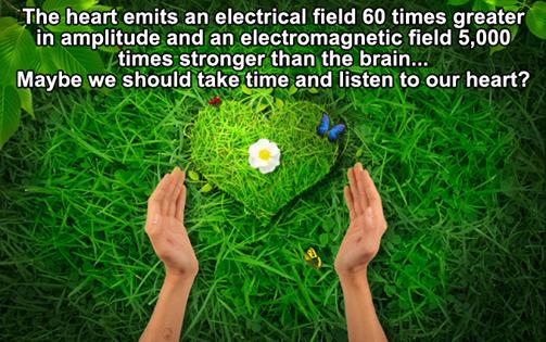 heart electrical field