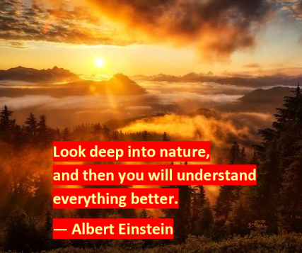 Albert-Einstein-on-Nature