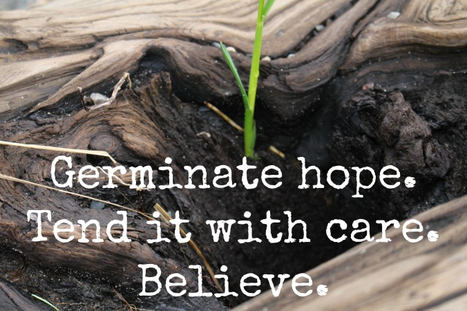 germinate hope.
