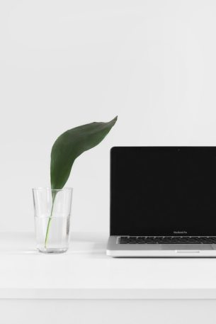 computer glass plant